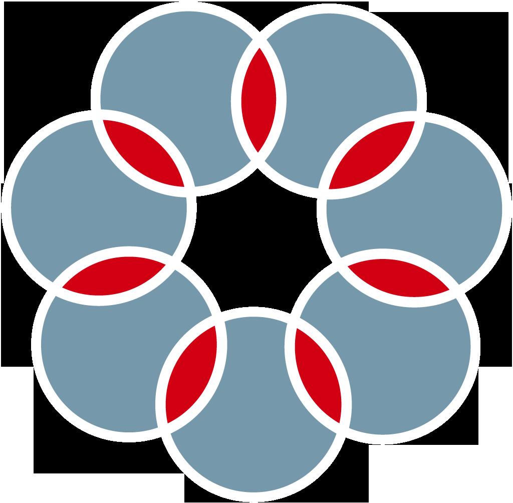 cvetok-iz-krugov